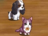 See who has the best pets in Fluffy Tale
